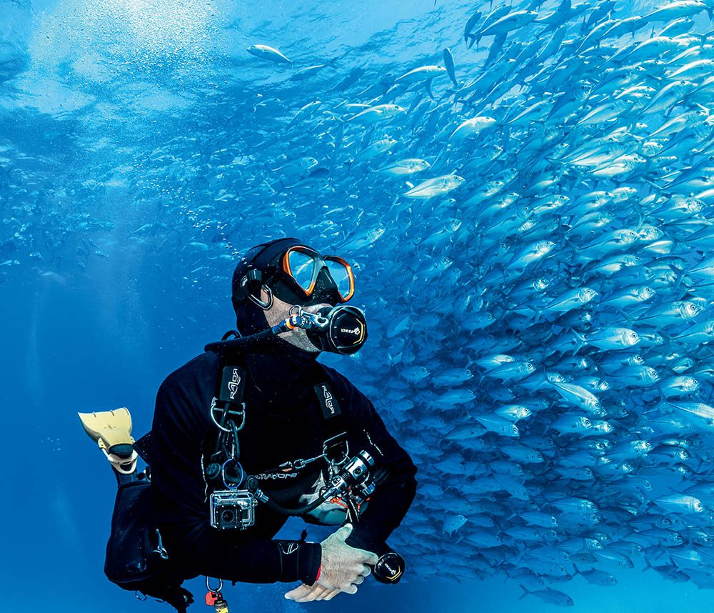 Dive-guide Alex gazes up at the huge school of jack.