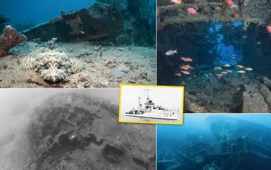 Clockwise from top left: Crocodilefish on the USS Tucker; fish inside the wreck; Million Dollar Point; view of the Tucker.