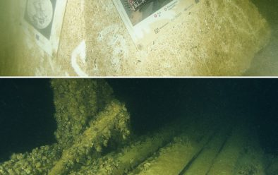 Top: Wreck info block for the Figurehead wreck. Above: Well-preserved wooden decking on the wreck.