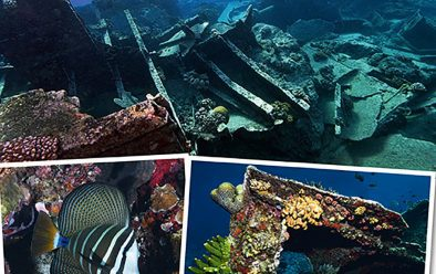 Top & right: Divers explore a shallow wreck. Above left: The Pacific sailfin tang is a striking resident of the reefs.