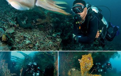 Top: Hence with a cuttlefish at Fukui. Above left: Cindy and Spencer dive the Molas wreck. Above right: the propeller.