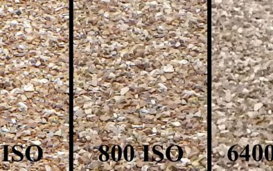 ISO comparison using a pebbled path – there's not much difference between ISO 125 and ISO 800, but after that contrast and detail start to be lost.