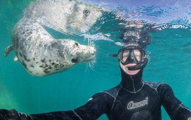 Dan Bolt and underwater friend.